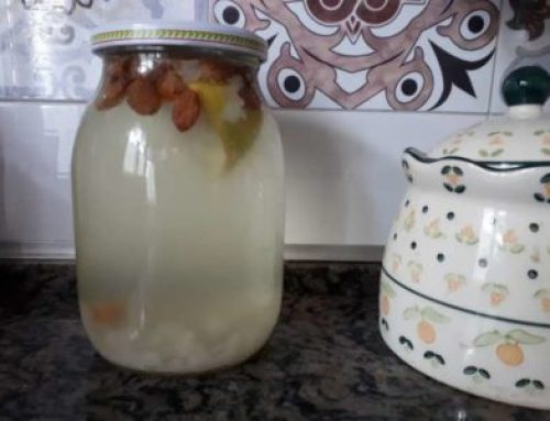 Kefir d'acqua, come autoprodurre l'elisir di lunga vita