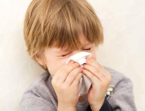 Come prevenire l'influenza e rinforzare il sistema immunitario con il diffusore di propoli