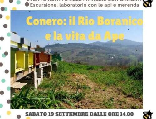 19 settembre escursione per bambini sul Conero: la vita delle api